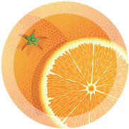 Oplus Orange 10 мл