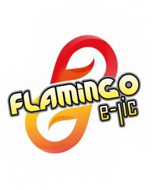 Flamingo e-lic